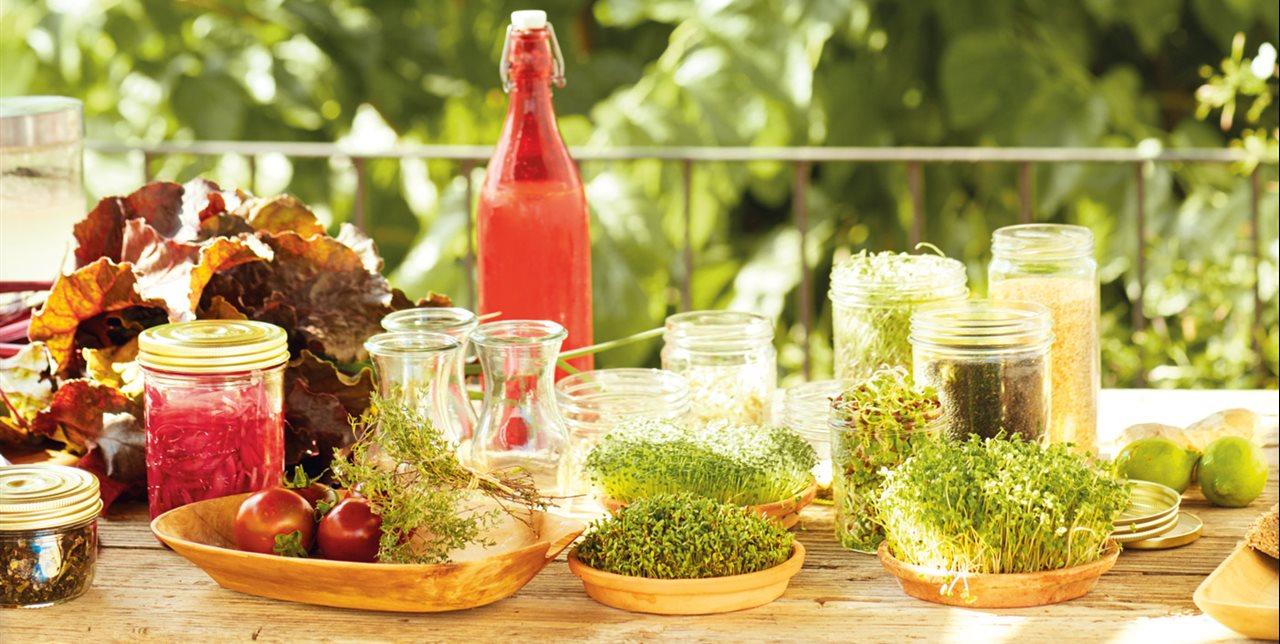 Alimentos que mejoran la Psoriasis.